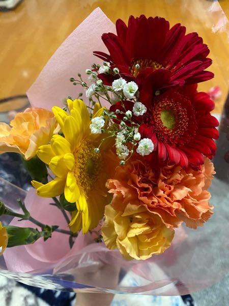 この写真の花の中でドライフラワーに向いている花を教えてください。