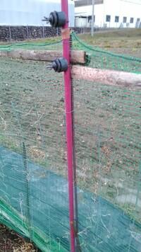 電気柵を作っているのですが、果たして動物に電気が流れるのか? サルやイノシシ等に対して電柵を作っています。完成形としては、高さ130cmくらいの亜鉛メッキのワイヤーメッシュ+網(ワイヤーメッシュの網...