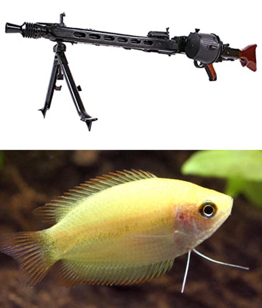 機関銃がグラミーに見えてきたら、もうどうしようもないですか?