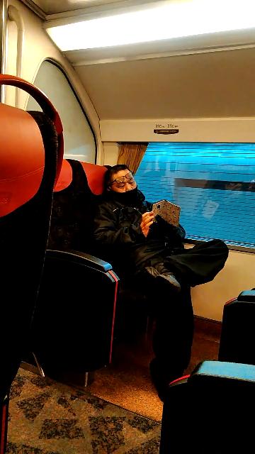 電車内でこのような男を見かけました。 どう思いますか?