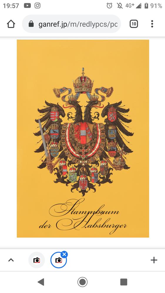 世界史 双頭の鷲 現在世界史を勉強中なのですがこの国章? はハプスブルク家のどういった国章なのかまた回りに沢山かかれている紋章はなにの紋章なのかを教えていただきたいです
