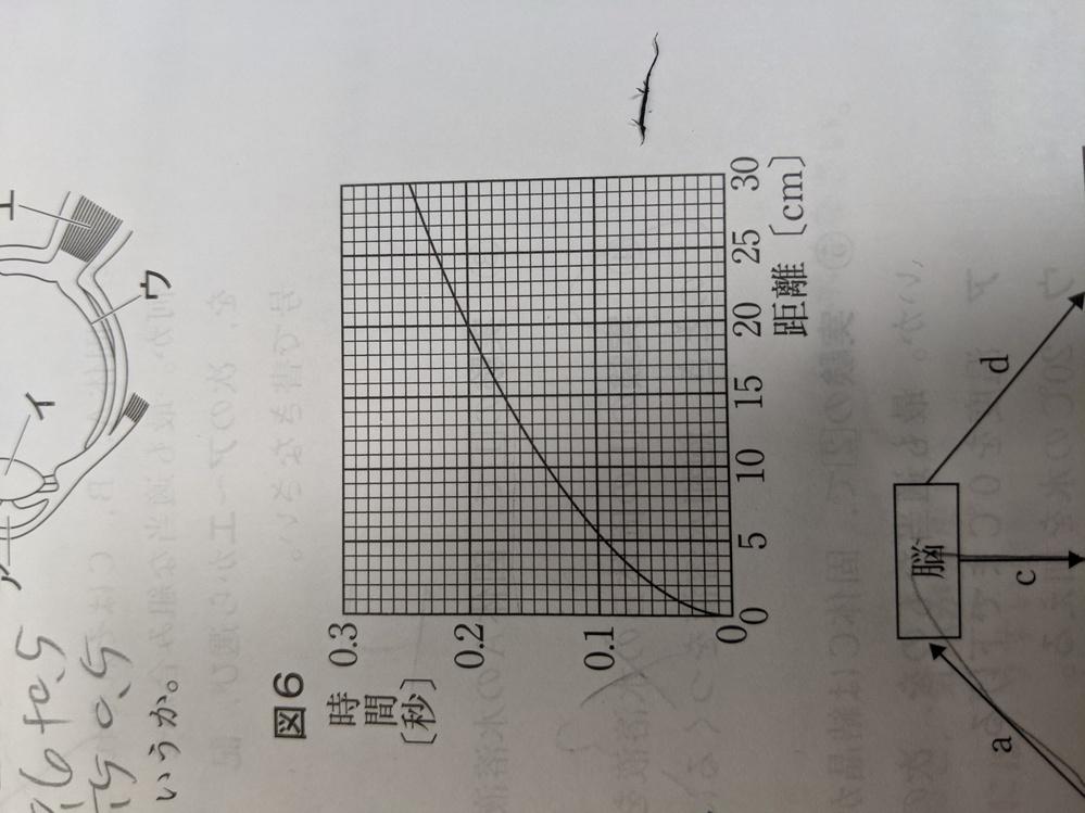 これ距離が16.5cmだった時、答えが0.18で 僕は0.19って答えたんですけど❌ですかね?