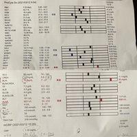 nfk様いつも本当にありがとうございます! 昨日、2週に一度の病院へ行ってまいりました。 血液検査の結果を添付致します。 それと前回の検査結果と質問も載せておきます。  https://detail.chiebukuro.yahoo.co.jp/qa/question_detail/q10239376175  実は水曜日あたりから食欲が落ち、1日に数回えづいたり吐くようになりまし...