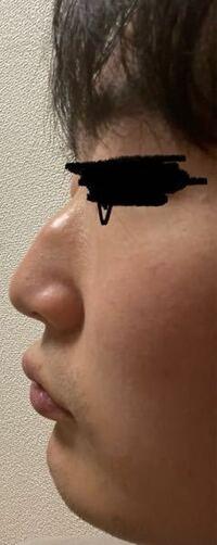 自分の鼻って高いと思いますか?鼻高いねって言われたんですが、皆さん的にはどう思いますか?正直な感想を教えてください。