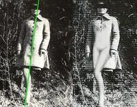 心霊写真ってスマホ撮影時代になってから聞かなくなりましたよね? やっぱりスマホじゃポラロイドカメラみたいに霊を写す事はできないのですか?