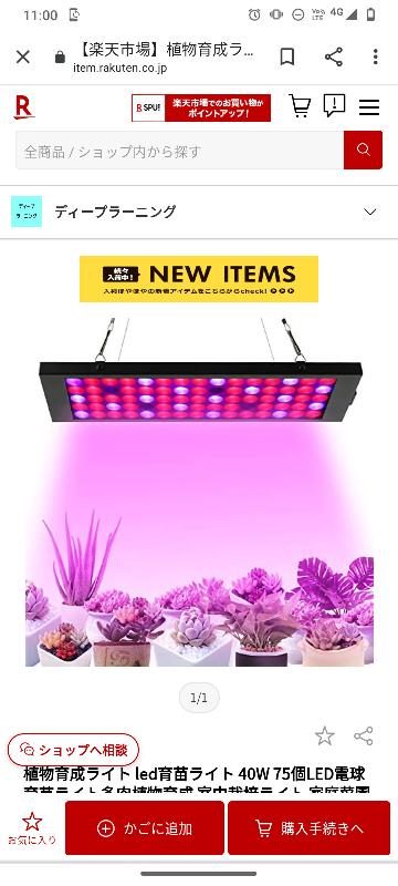 LED育成ライト買えば、室内でもパキラとかユッカを枯らすことなく育成出来ますか?