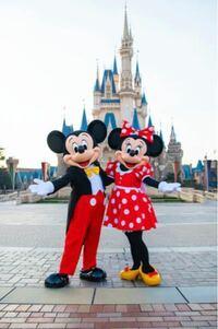 ミッキーマウスかミニーマウスを生で見たことありますか?どんな感じなんですか?可愛いですか?