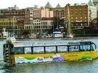 なぜ水陸両用バスが人気なんですか?