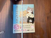 1冊の本をきれいに飾って、保存したいです。 アクリルケースに入れて乾燥剤入れて保存できたらと思うのですが、納得できるサイズのアクリルケースがありません。 本のサイズは写真のような感じです。 何かおすす...