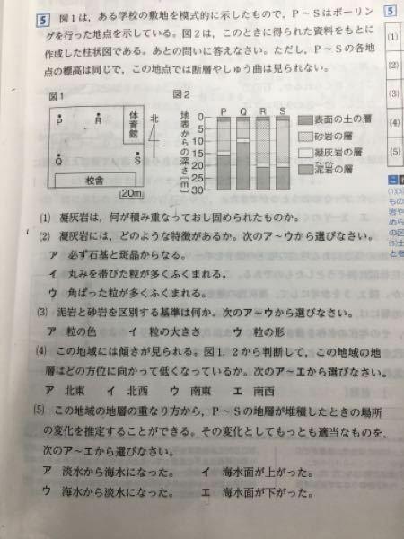 この大問の(5)ですが、解説を読んでも分かりませんでした。分かる方いらっしゃいますか?