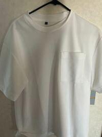 明日大学で健康診断があるのですが、無地のTシャツがいります。胸のところにポケットがあるのですが、これは無地ですか?