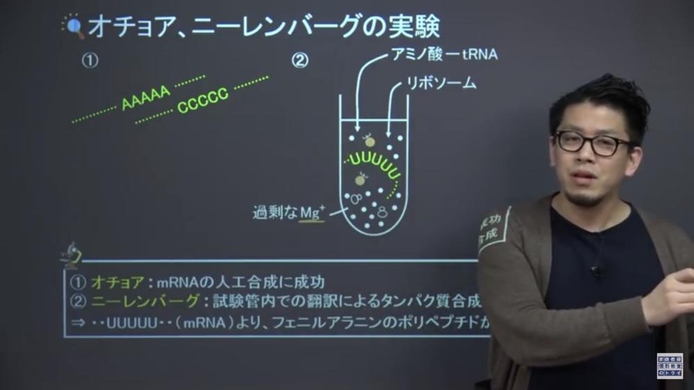 高校生物遺伝のニーレンバーグの実験での質問です。写真で、なぜマグネシウムイオン入れるんですか??