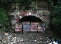 日本一怖い心霊スポットで検索したら、九州の旧犬鳴トンネルという所が出てきました、なぜそんなに怖いんでしょうか、映画にもなったみたいですが、犬鳴村と言うのは実際にあったんですか またなぜこのように入れなくしてあるんでしょうか。