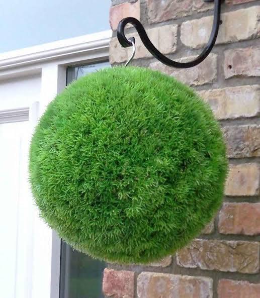 このマリモのような玉はどうやって作るのでしょうか? また、このグリーンはサギナでしょうか? 同じものを作ってみたいので、ご存知の方おりましたらお願いしますm(_ _)m