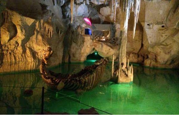 この画像怖くないですか??(汗) 洞窟が怖いと生き埋め恐怖症と言われるらしいのですが、私はそうではなく洞窟に水があるのがとても怖いです、、。 水自体が怖いのではなくこういう画像の水が無理です。 この気持ち分かる方いらっしゃいますか?