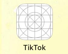 TikTokのアプリ入れてもこんな感じになるんですけど、どうしたらいいですか?