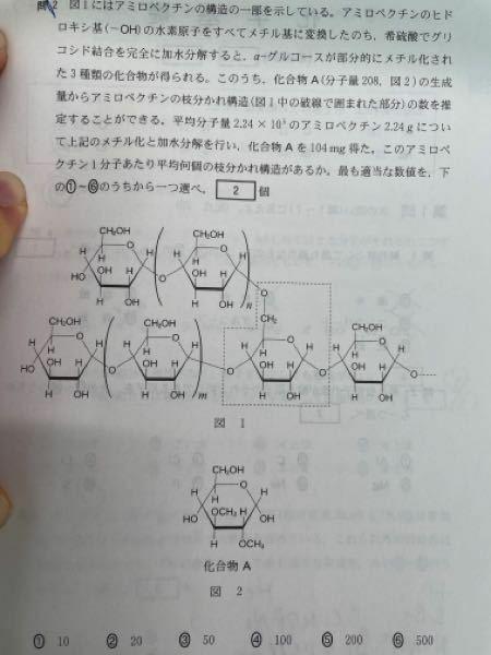 高校化学の問題点です 計算から、 アミロペクチンの物質量が1✖️10^-5 化合物Aの物質量が50✖️10^-5 と出ました 解説によると、 アミロペクチンの枝分かれ一個につき、化合物Aが一個生じるからアミロペクチン一分子あたりの平均枝分かれの個数は50個となっていますが、この解説が理解出来ません そもそもなぜアミロペクチンの方が物質量が少ないのでしょうか?