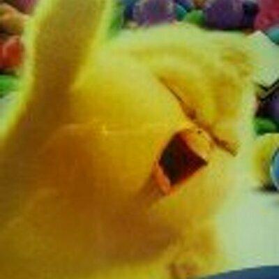 15年くらい前にとった映画のポスターの写真です、ヒヨコがメロイックサインしてます。この映画名わかる方おりますか?