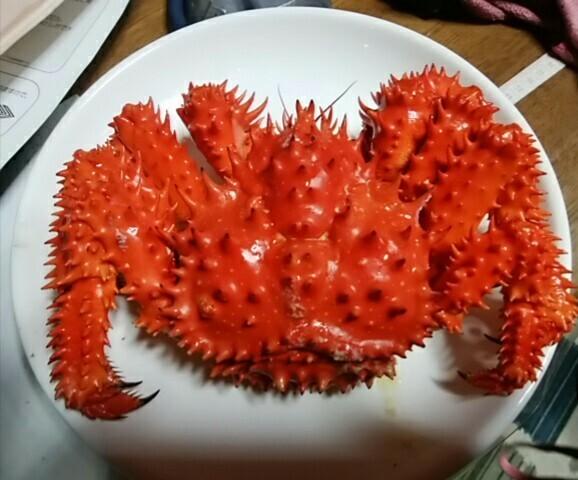 北海道の道東で採れる花咲ガニですが、本州の魚屋やスーパーの鮮魚売り場で見かけることありますか?