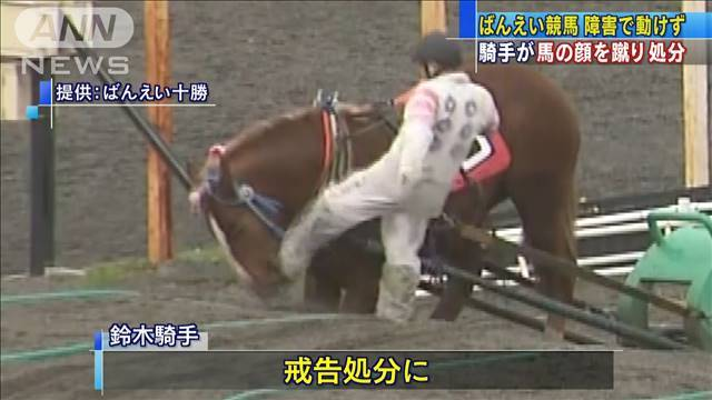 鈴木恵介騎手の顔面に馬キックを見舞わせるように、同騎手に顔を蹴られた馬を調教する必要があると思うんですよね…。 だって、馬主さんが直々に鈴木恵介騎手の顔面を蹴ったりしちゃ、やっぱマズイっしょ、いろいろと。
