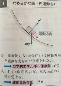 垂直抗力と垂直抗力の反作用の水平成分は等しく内力だから水平方向には運動量保存則が使えると思ったんですが、参考書にはダメだと書いてました。なぜですか