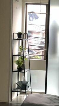室内でアガベやパキポディウム等を育てたいのですがその場合植物用LEDは必須でしょうか? 現時点ではこういった感じで窓付近に置いています。窓は西向きです。