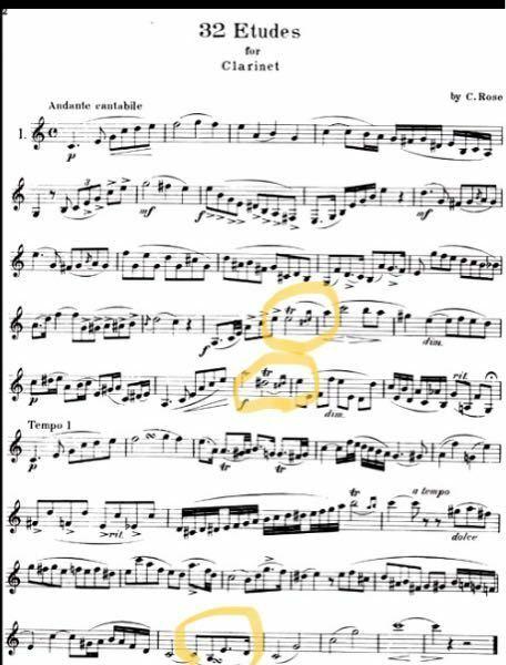 下の写真に丸をしてある3箇所についての質問です。 ①トリルというのは半音下か上の音を吹くのか、全音下か上の音を吹くのかどっちですか?下の写真の音だと何になりますか? ②1番下の丸をつけてあるところにある記号はどういう意味ですか?