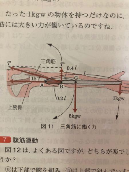 どなたかお知恵をお貸しください。 この図の、三角筋に働く力の大きさについて トルクの知識を混ぜて、分かりやすく説明し ていただきたいです。 よろしくお願いいたします。
