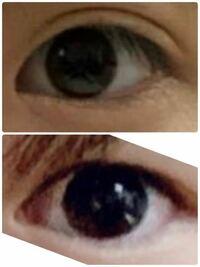 人間はみな全て黒目の大きさが一緒と聞いたのですが 明らか下の方が黒目が大きく見えます。本当に黒目の大きさは一緒なのですか?(黒目というより虹彩?です)