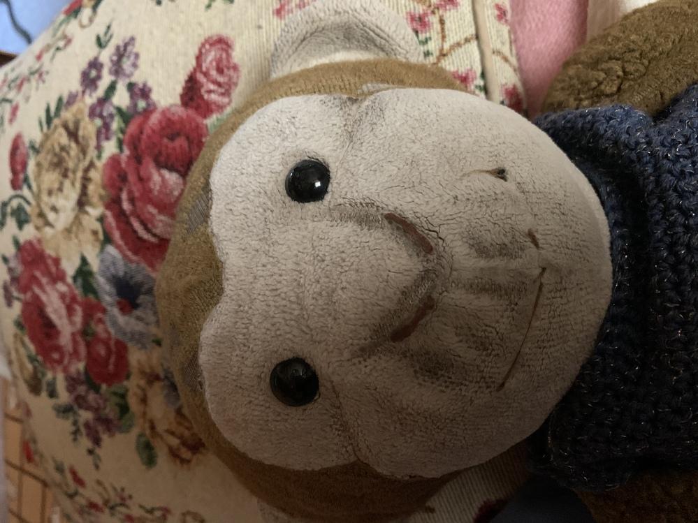 10年以上前になるのですが、これと同じサルの人形を探しております。見たことあったらお持ちの方いますでしょうか?