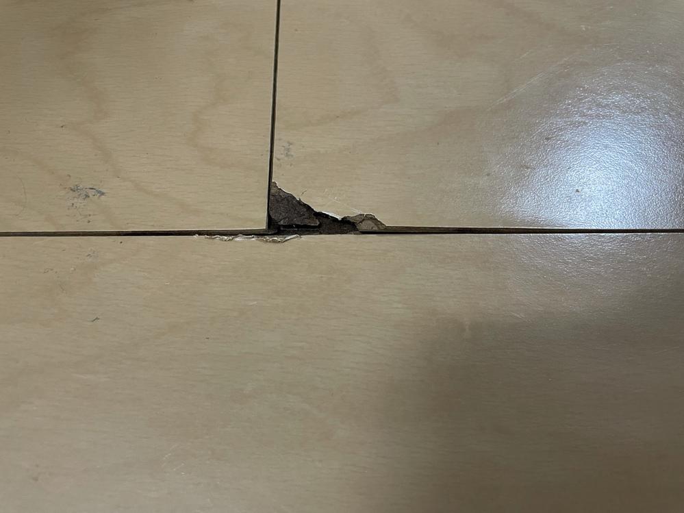 賃貸物件で床が剥げました。また、写真外に浮いてきている床もあります。(浮いてきているのは15~20cm程度で板の端っこだけです) 築6年で住んで4年目になります。部屋は空気清浄機にて室温管理をしており大体50パーセントくらいで日々生活をしていました。 台所付近のテーブル下。椅子の出し引きで剥がれたようです。この場合、火災保険で直した方が良いのでしょうか? また、退去するとしたら退去費はかかる...