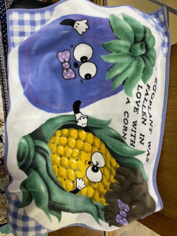 こちらの毛布のブランド?または売っているお店などわかる方はぜひ教えてください。 とても欲しい毛布なのです ♀️