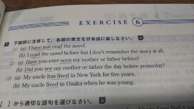 日本語訳お願いします。わかりません(´;ω;`)
