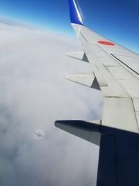 飛行機から外を見たら、下に飛行機の影ができて、周りが虹の輪の様になっていました。 2017年11月に撮影しました。 これは虹だと思っていいのですか? 数年後にも同じ現象を見ましたが、珍しくない現象でしょうか?