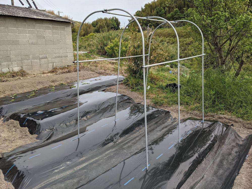 家庭菜園で空中栽培(小玉スイカ、メロン)をするのに、トマトの雨よけの支柱を立てました。 これだけでは強度が不安なのですが、台風でも耐えるには何でどのように補強すればよろしいですか?