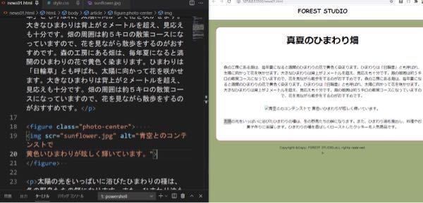HTMLについて。画像が表示されません。なぜですか?教科書通り正しく入力したのですが。本来ひまわりの画像が入るはずです。