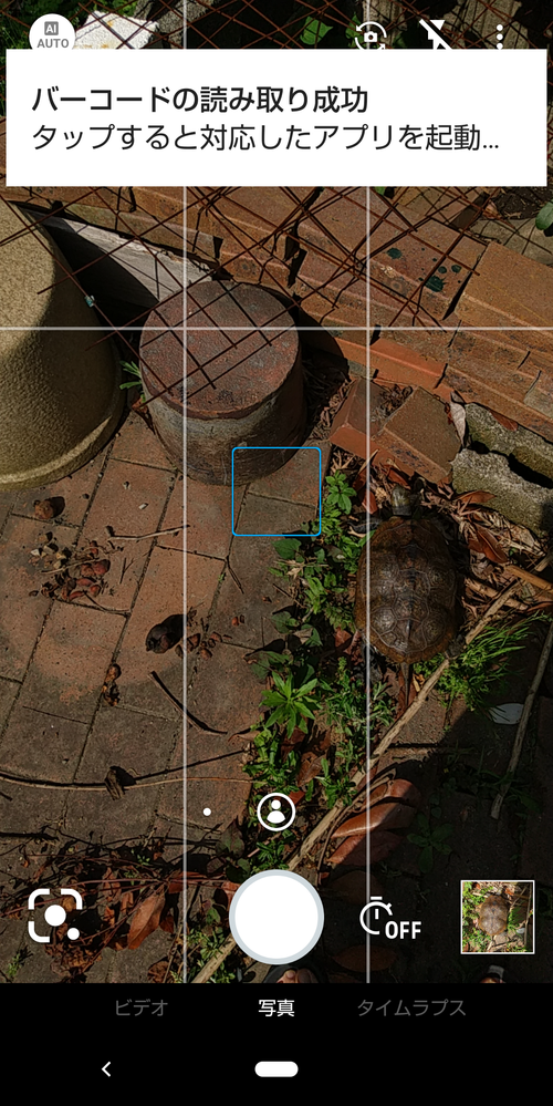 ペットの亀の写真を撮影していたところ 甲羅の模様をバーコードとして読み取ったらしくタップしたら8桁くらいの数字が出てきました。 亀の甲羅をバーコードとして認識するなどという現象はあり得るのでしょうか?
