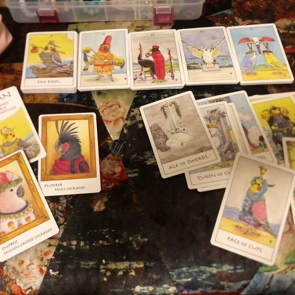 タロットカードを説明書通りの種類と枚数で分けたのですが下のカードたちが余りました。 左下は多分書き下ろしの特典カードだと思うのですが右下のカードは数字もなく英語だけなので何に使ったらいいのかよくわかりません。 タロットカード自体、可愛いなと思って買った物で知識も全くないので、 知識のある方に教えていただけたらうれしいです。 よろしくお願いします。