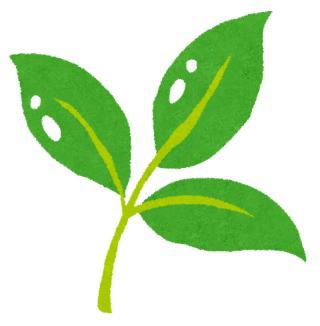 皆さん新緑から連想する物といえばなんですか?