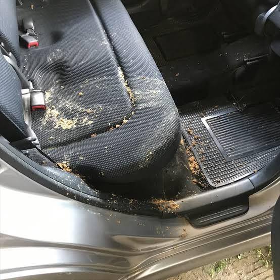 車にゲロ吐いてしまいました。 どうにか綺麗にする方法はないでしょうか?