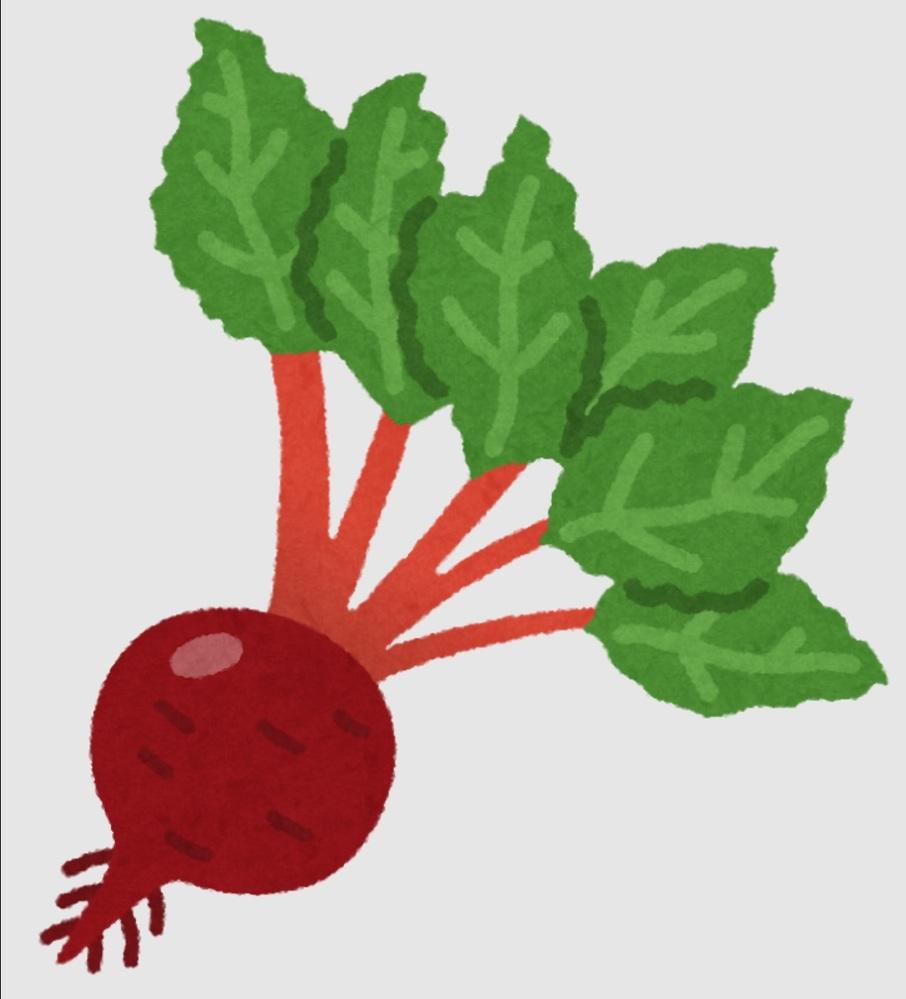 最近「ビートルート」という野菜をもらったのですが、 どう調理すればいいかわかりません。 どのような調理法がおススメでしょうか? https://ja.wikipedia.org/wiki/%E3%83%86%E3%83%BC%E3%83%96%E3%83%AB%E3%83%93%E3%83%BC%E3%83%88