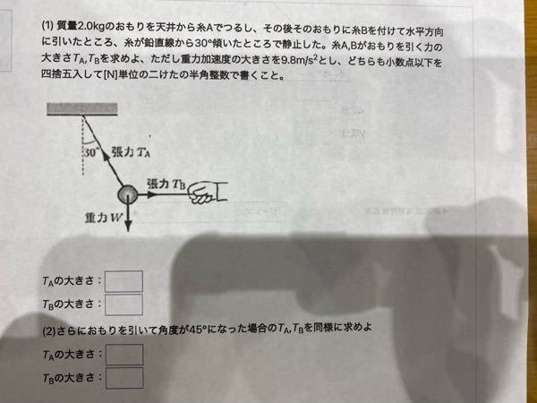 物理基礎の問題です。分かる方いたら答えを教えてください。
