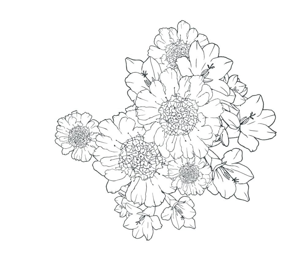 CLIP STUDIO ASSETSで配布されているブーケブラシというものがあるのですが、このブラシの花の種類がわかる方がいれば教えてください