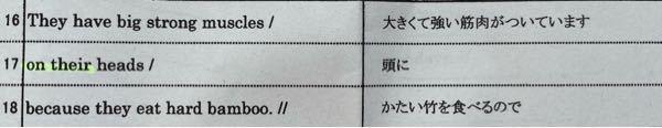英語の質問なのですが、 右が英文で左が和訳になっています。 この場合、なぜbambooは複数形じゃないのですか?