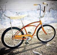 自転車の後輪ホイールについて ブレーキパーツは大体どれも同規格で付け替えられるものですか?  古い自転車のスチール製20インチホイールを軽量のアルミ製に変更したいのですが、コースターブレーキは残したいです。 また、古いスタイルと最近のスタイルでデザインに違いはあるでしょうか