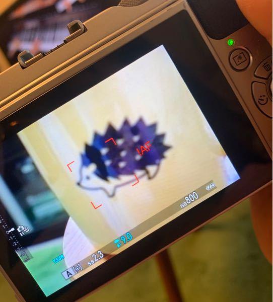 ミラーレス一眼 初心者ですm(_ _)m コップに映るハリネズミを撮りたかったのですが、どうしてもピントが合いません。 モードはAモードにしています。 画面に赤く表示されている「AF!」というのは何でしょうか...?? その他の物でもアップすると同じようにぼやけてしまいます。