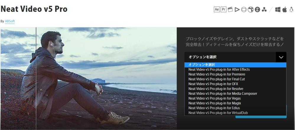 「Neat Video v5 Pro」 動画のノイズを除去するには、どれを選択すればいいですか?