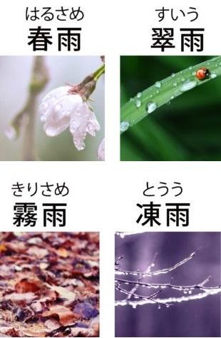 どんな「雨」が好きですか??