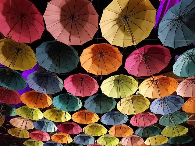 傘の日(6月11日)には 傘を新調しますか??