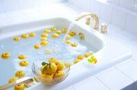 冬至のゆず湯のように 夏至のお風呂に何か決まったものを入れますか??